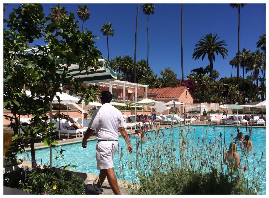 LA, Beverly Hotel, pool